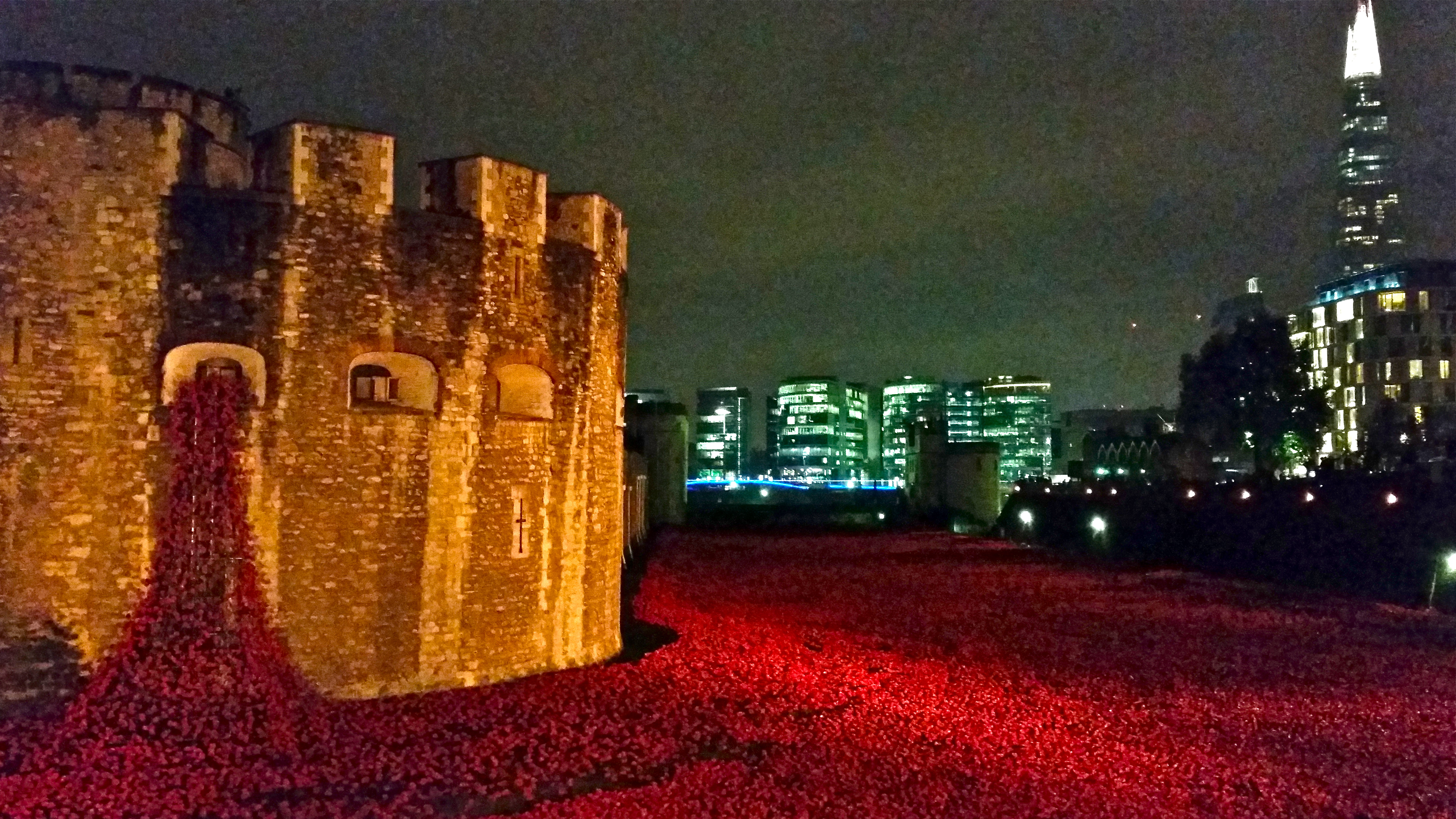 Images of Tower of London Poppies at Night Poppies at The Tower – Night