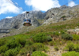The tram to the top of Table Mountain.  The floor rotates so everyone has a great view on the way up!
